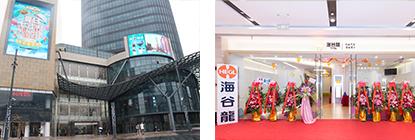Shanghai Yangpu Hopson Centre