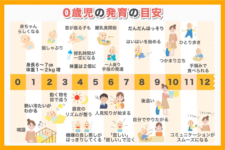 0歳児の発育の目安